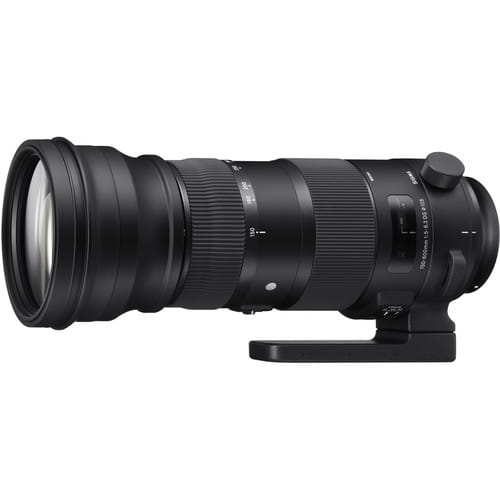 Sigma 150-600 mm f/5-6.3 DG OS HSM Sport Canon